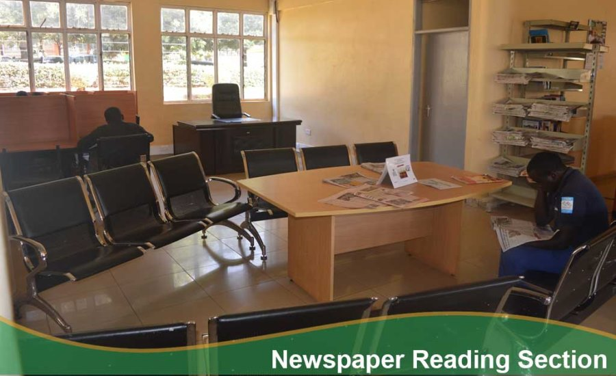 12 Newspaper Reading Section.jpg